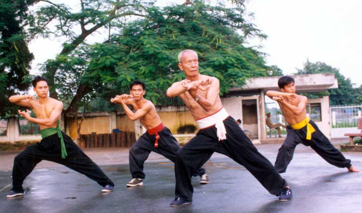 Võ cổ truyền Việt Nam